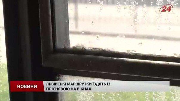 Пліснява у львівських маршрутках загрожує здоров'ю пасажирів