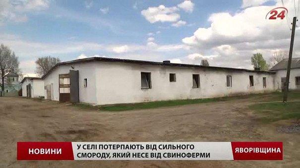 Через сморід від свиноферми селяни на Львівщині організували свій майдан