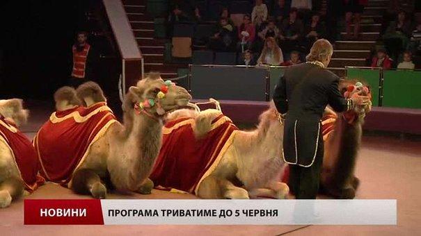 У львівському цирку показали  нову програму «Караван удачі»