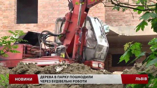 У львівському парку «Горіховий гай» будівельники пошкодили 20 дерев