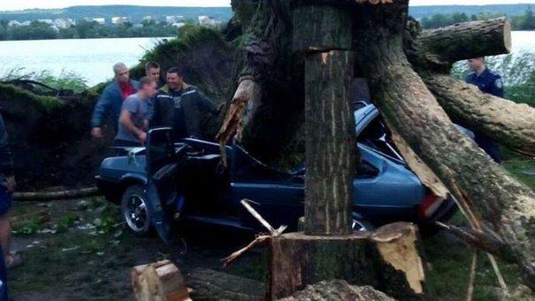 Повалені негодою дерева заблокували на Львівщині рух залізницею та автодорогами
