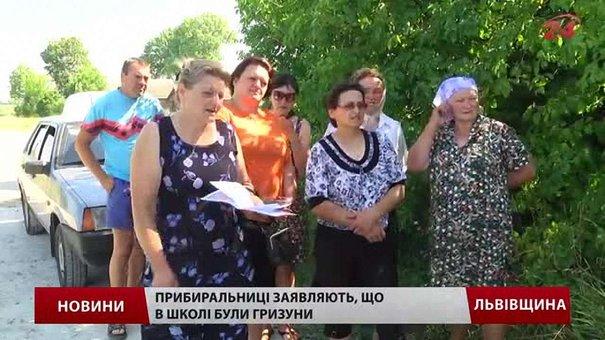 Зі школи на Львівщині одночасно звільнили всіх прибиральниць