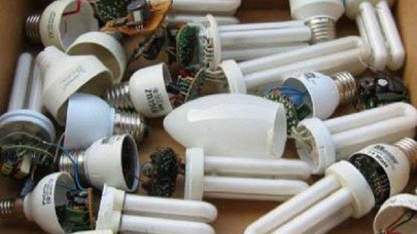 Люмінесцентні лампочки продовжують збирати для утилізації у Львові