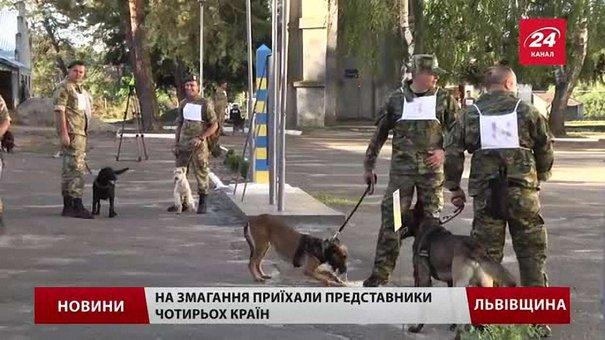 У Великих Мостах стартували міжнародні змагання службових собак прикордонників