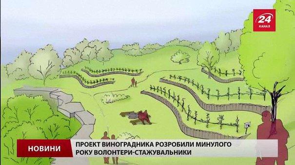Парк «Знесіння» потребує небайдужих для втілення ідеї виноградарства