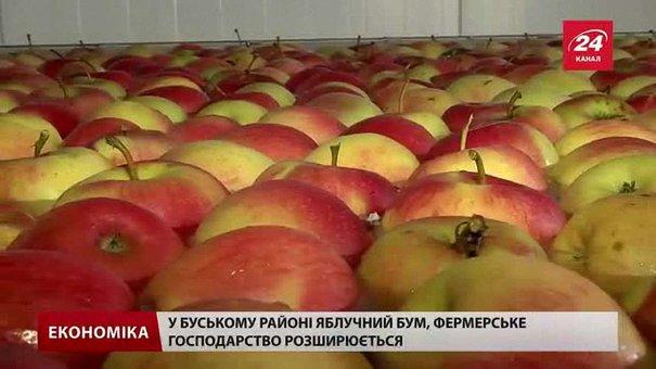 На Львівщині вирощують фрукти, які конкуруватимуть з європейськими