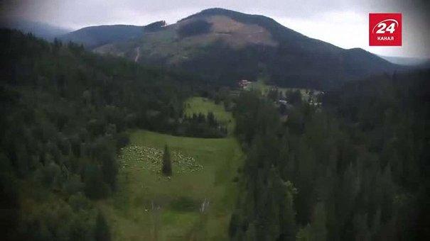 Куди поїхати зі Львова на вихідні: до вівчарів на полонину Ґропа