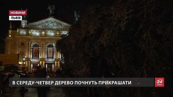 На площі перед Львівською оперою встановлюють ялинку