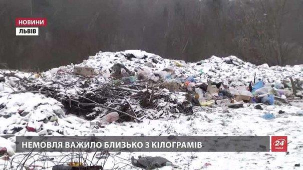 Поліція Львівщини шукає матір, яка викинула на смітник власне дитя