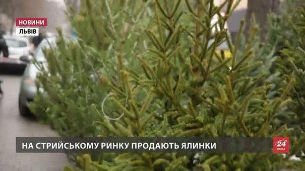 У Львові за продаж ялинок без чіпів торік оштрафували лише одну людину