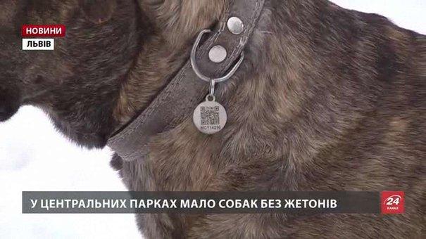 У Львові власників собак без жетона штрафуватимуть з 1 лютого
