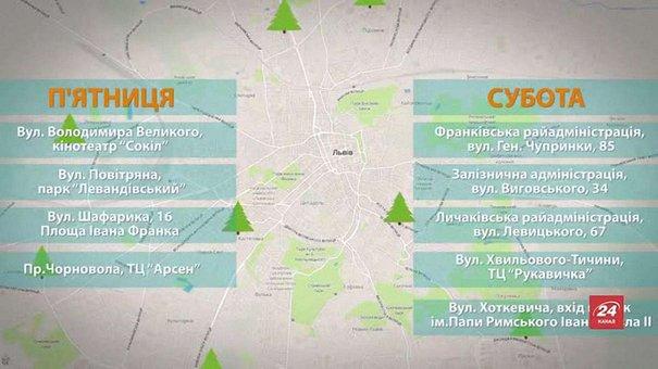 Львів'яни можуть здати ялинки для утилізації