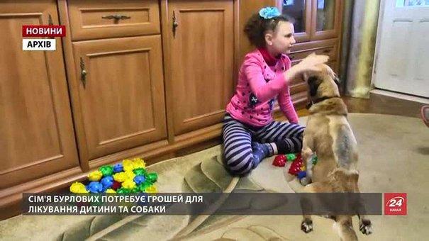 На Львівщині собака, який «навчив» говорити дівчинку, отримав шанс на одужання
