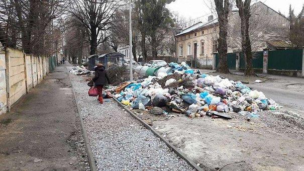 Через проблеми з вивозом сміття  у Львові можуть закрити школи та садочки