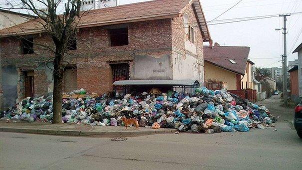 Синютка пообіцяв за тиждень вивезти сміття зі Львова на полігони області