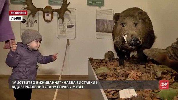 У Львові може закритися один із найбагатших на скарби природничих музеїв Європи