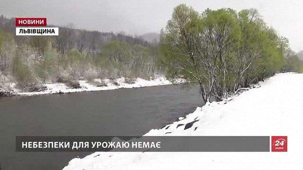 Синоптики прогнозують можливі снігопади на Львівщині до кінця місяця