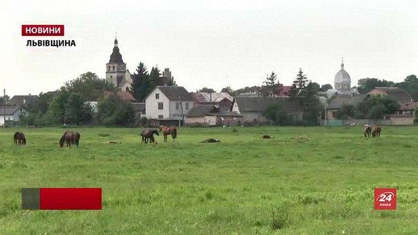 Історики розробили туристичний маршрут найнебезпечнішим шляхом Львівщини