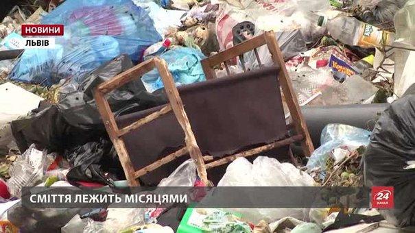 Кількість невивезеного сміття у Львові досягла рекордної позначки