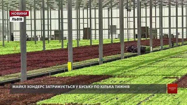 В Україні з вересня почнуть діяти нові правила працевлаштування для іноземців