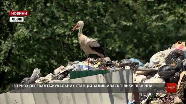 Водії «АВЕ-Львів»  не мають куди вивозити сміття з вулиці Північної
