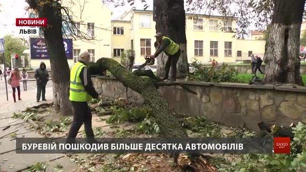 Наслідки негоди львівські комунальники усуватимуть і у вихідні