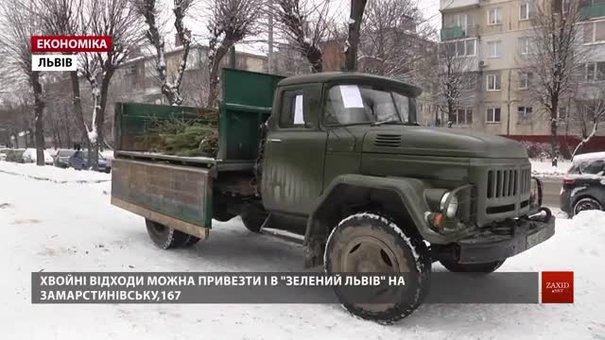 Використані ялинки у Львові збиратимуть до кінця тижня