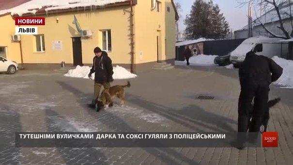 Львівські патрульні вигуляли безпритульних собак та cпекли печиво