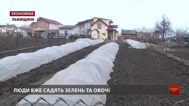 Чотири села біля Львова з квітня платитимуть за воду, яку досі отримували безкоштовно
