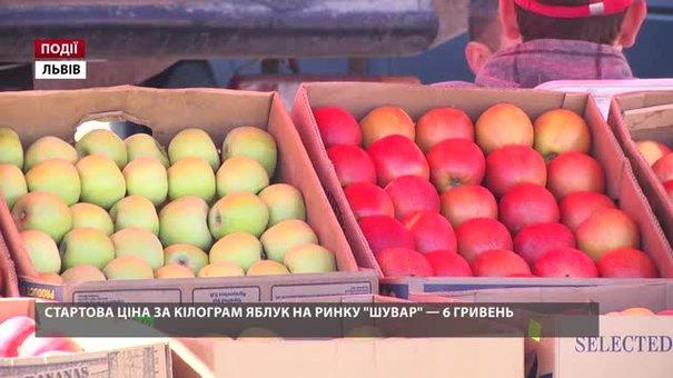 Стартова ціна за кілограм яблук на ринку «Шувар» – 6 гривень