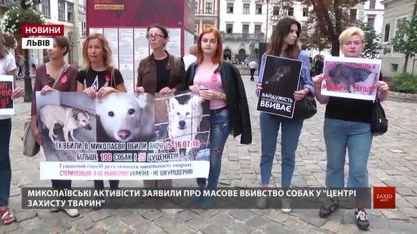 Кілька десятків львів'ян приєдналися до акції «Україна — не живодерня!»