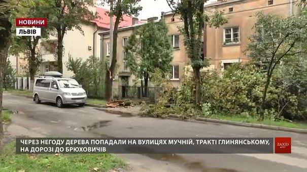 Рятувальники ліквідовують наслідки негоди у Львові та області