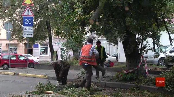 До ліквідації наслідків негоди у Львові залучили понад 1200 комунальників