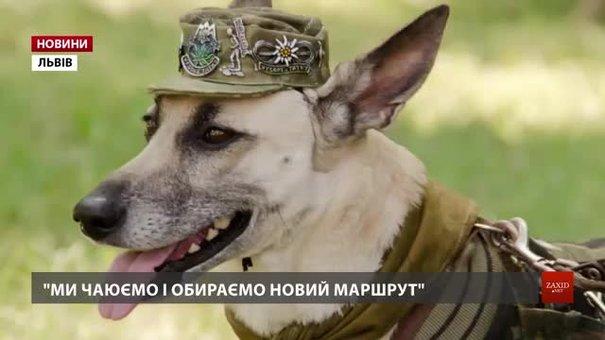 До Львова повернулася собака Лада, яка з господарями об'їздила вже 14 країн світу