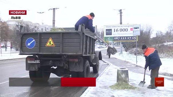 У Львові готові до потужних снігопадів: у запасі є 66 тонн нового реагенту від ожеледиці й снігу