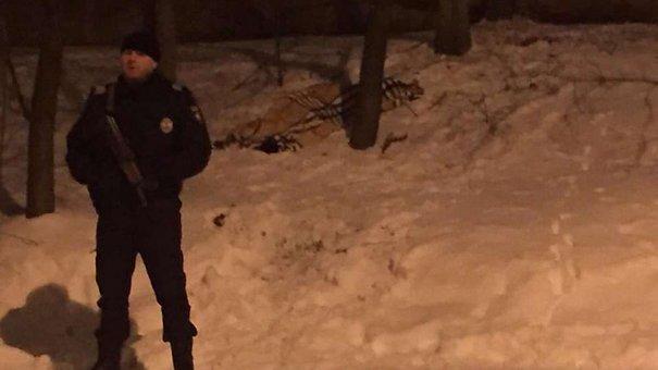 Школяр, що випав з багатоповерхівки у Львові, був під дією галюциногенів