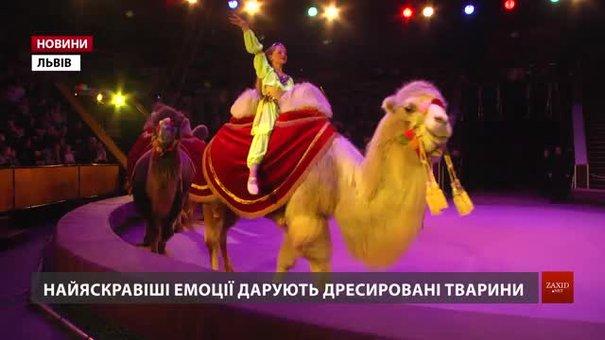 У Львівському цирку нова прем'єра яскравих емоцій