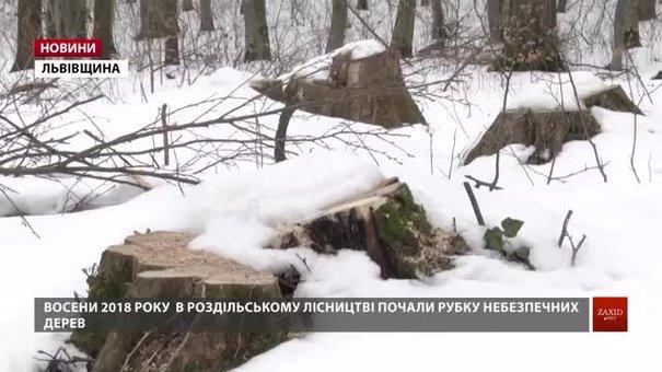 Український кругляк провозять контрабандою до Європи