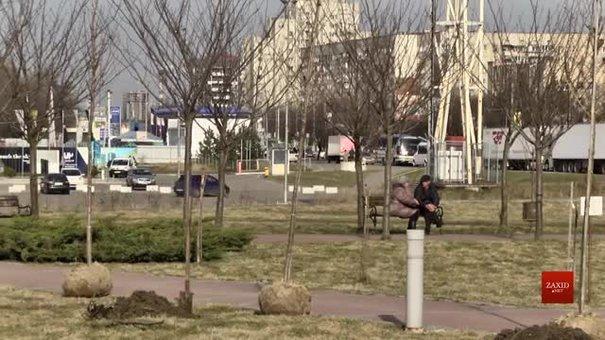 На місці зламаних вандалами дерев на Сихові висадили 30 сакур