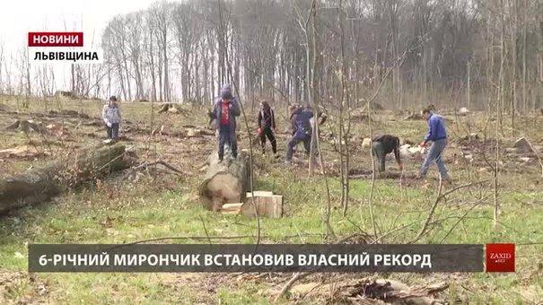 До рекордного висадження дерев на Львівщині долучились понад півтисячі людей