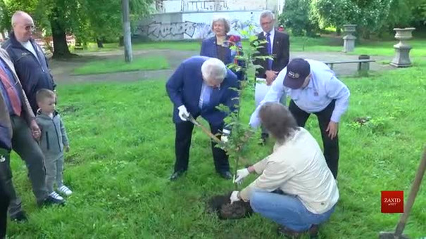 На вулиці Замарстинівській посадили перше символічне дерево на місці майбутнього скверу