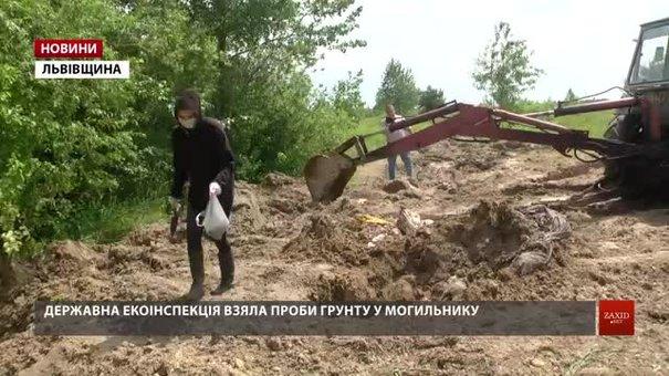 Свиноферма влаштувала незаконний скотомогильник на землях атовців біля Кам'янки-Бузької
