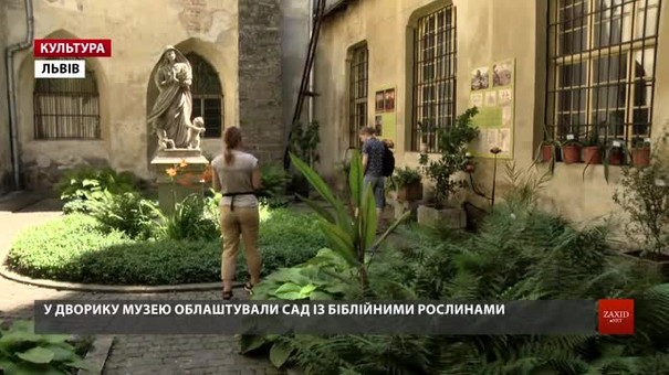 Вперше у Львові відкрили виставку живих біблійних рослин