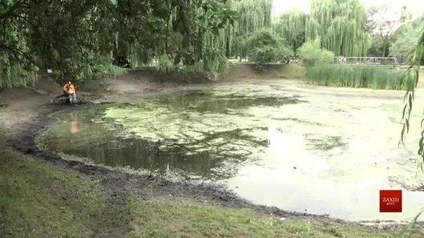 У Львові на вулиці Панча впорядковують озеро