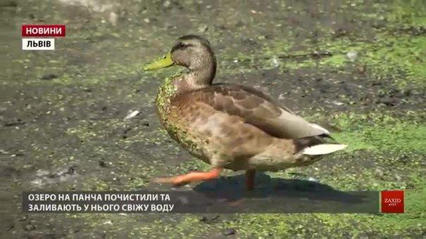 У Львові озеро на Панча наповнюють водою