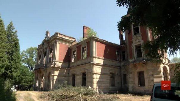 Волонтери-науковці прибирають Тартаківський палац XIX ст. і розробляють спосіб його порятунку