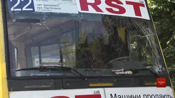 У Брюховичах зламане дерево розбило маршрутку з пасажирами