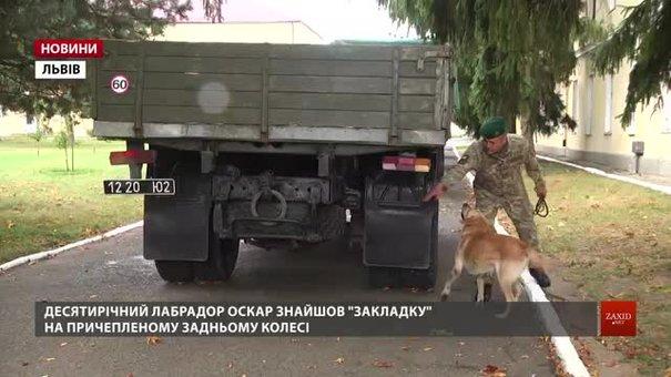 На Львівщині понад 20 собак змагаються за звання найкращого охоронця кордону
