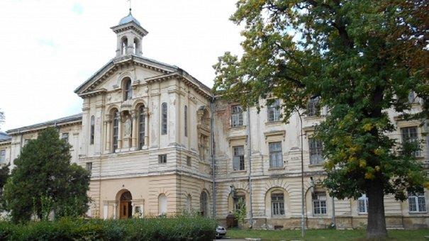 Для перереєстрації львівської психлікарні у село забракло одного голосу