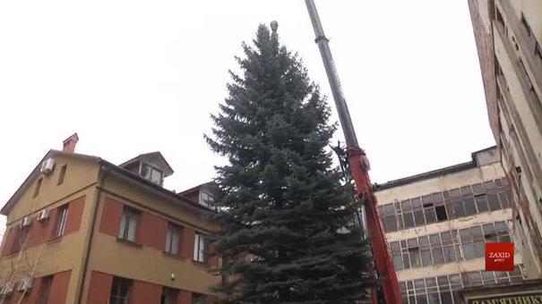 У центрі Львова встановлять сріблясту ялинку з колишнього заводу «Кінескоп»